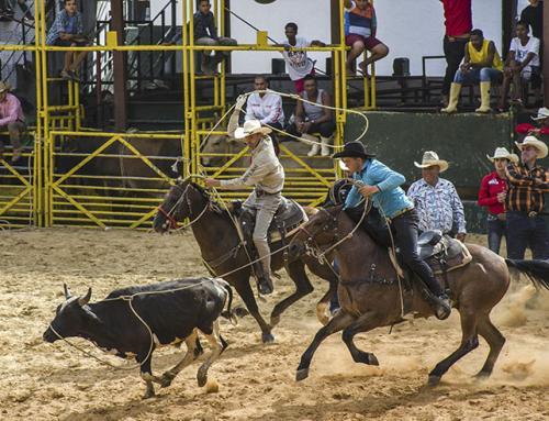 Cawboys a la Cubana…